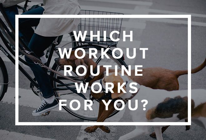 Which Workout Routine Works for You Banner